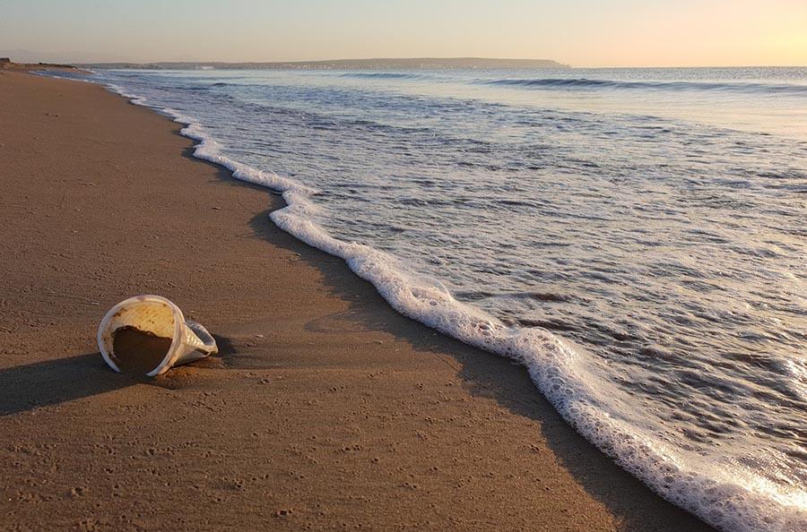 gobelet en plastique qui traine sur la plage