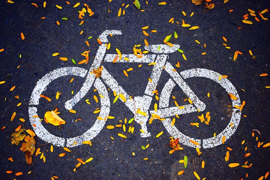 image de vélo sur un sol couvert de feuilles